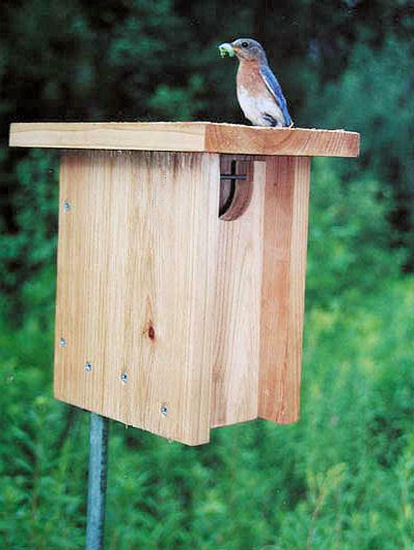 Gilwood nestbox