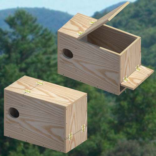 nestbox-plans-for-large-birds Owl House Plan on kanga house plans, owl sounds, paris house plans, mallard house plans, woodpecker house plans, bat box plans, bluebird house plans, snapdragon house plans, owl woodworking pattern, owl birdhouse, bat house plans, blue jay house plans, star house plans, t-14 martin house plans, owl home, angel house plans, bird house plans, owl habitat, hummingbird house plans, dove house plans,