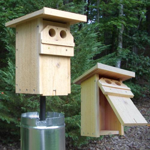 Bluebird nestbox plans for Sparrow birdhouse plans