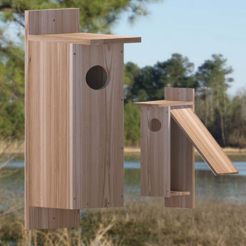 nestbox-plans-for-large-birds